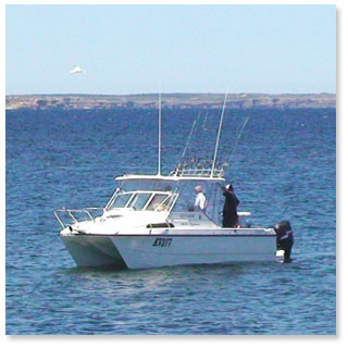 Marion Bay Fishing Charters
